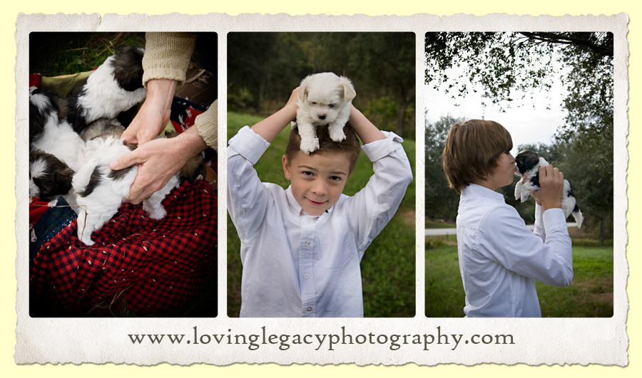 largo florida family portraits pet portraits loving legacy photography