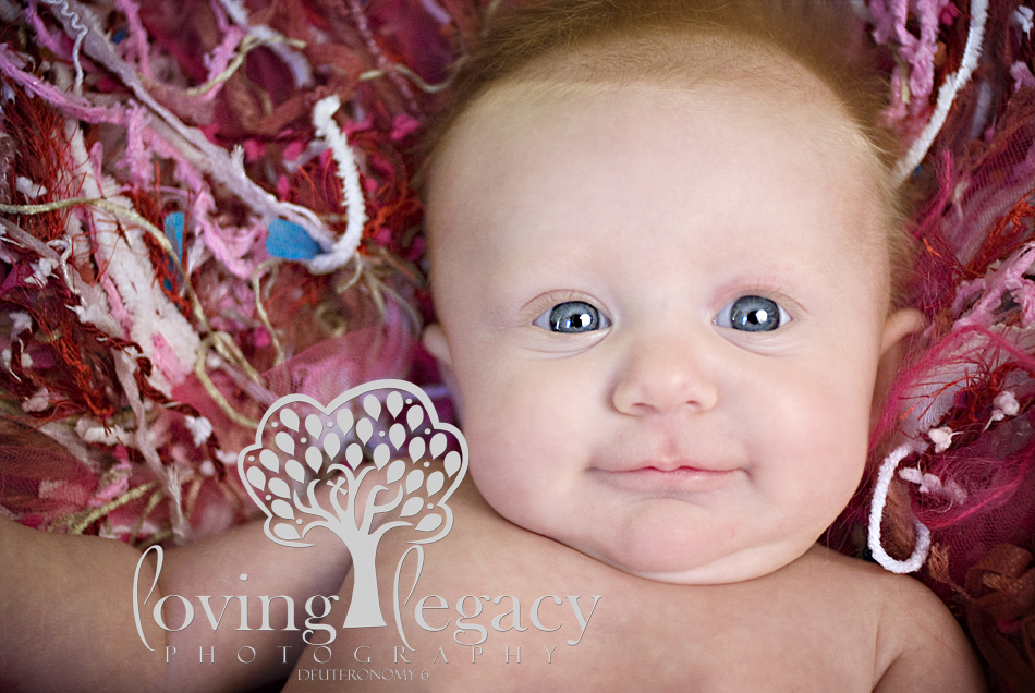 clearwater baby photographer loving legacy angela sackett