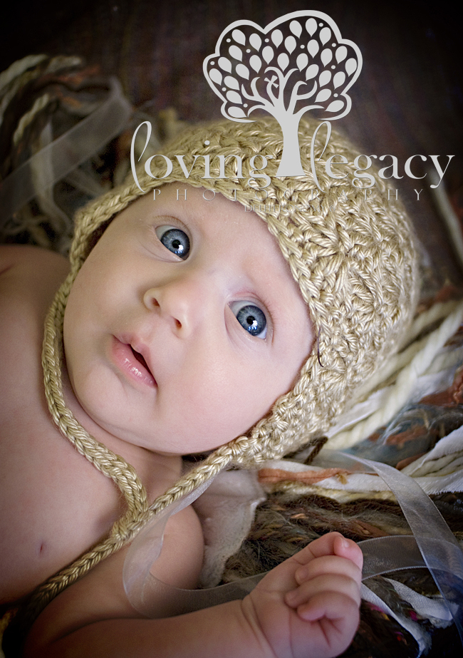 tampa newborn photographer angela sackett loving legacy photography