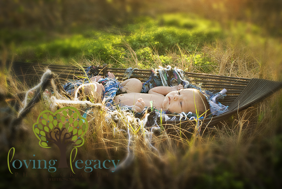 tampa newborn photographer loving legacy angela sackett
